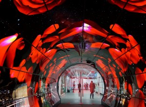 Seoul Tower Plaza OLED Tunnel (2015) 01